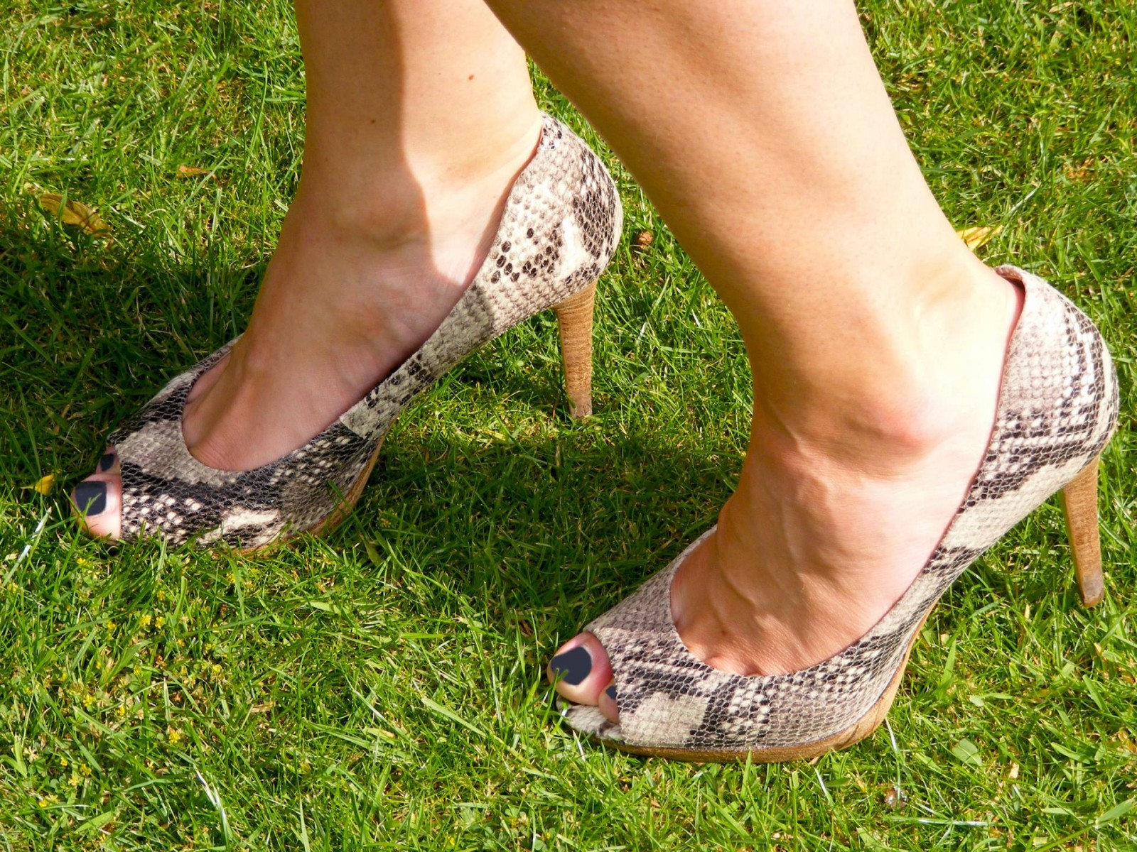 Marks and Spencer snakeskin shoes