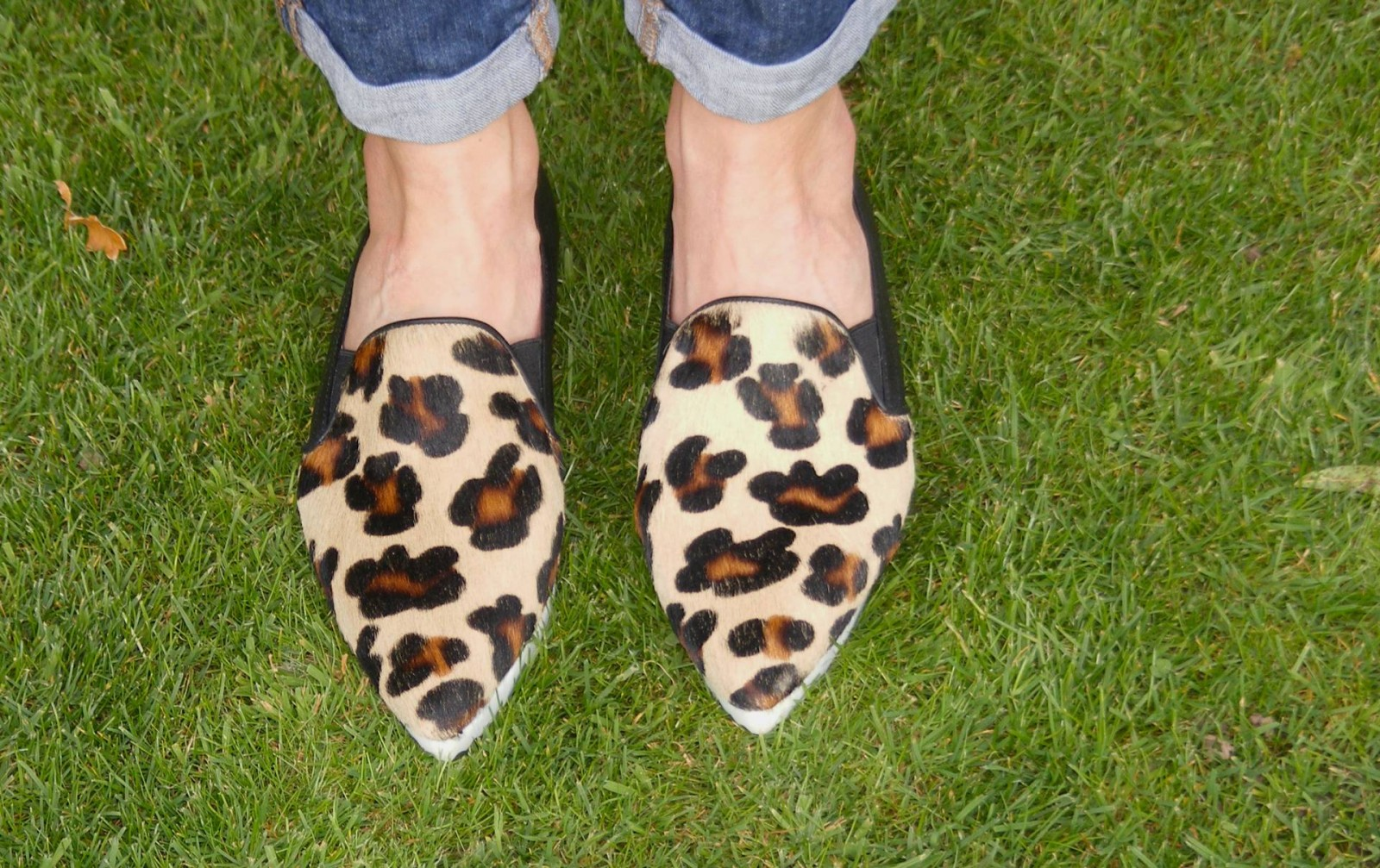 Sienna leopard print loafers