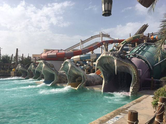 Holiday in Abu Dhabi yas-waterworld snakes