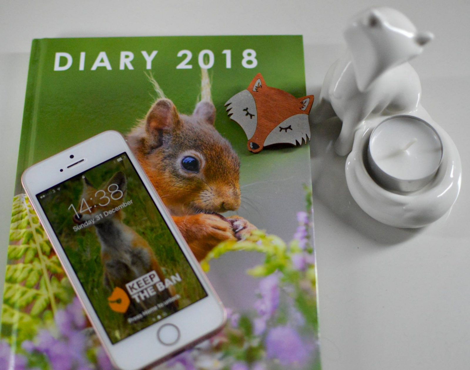 Highlights of 2017 and Plans for 2018 wildlife diary