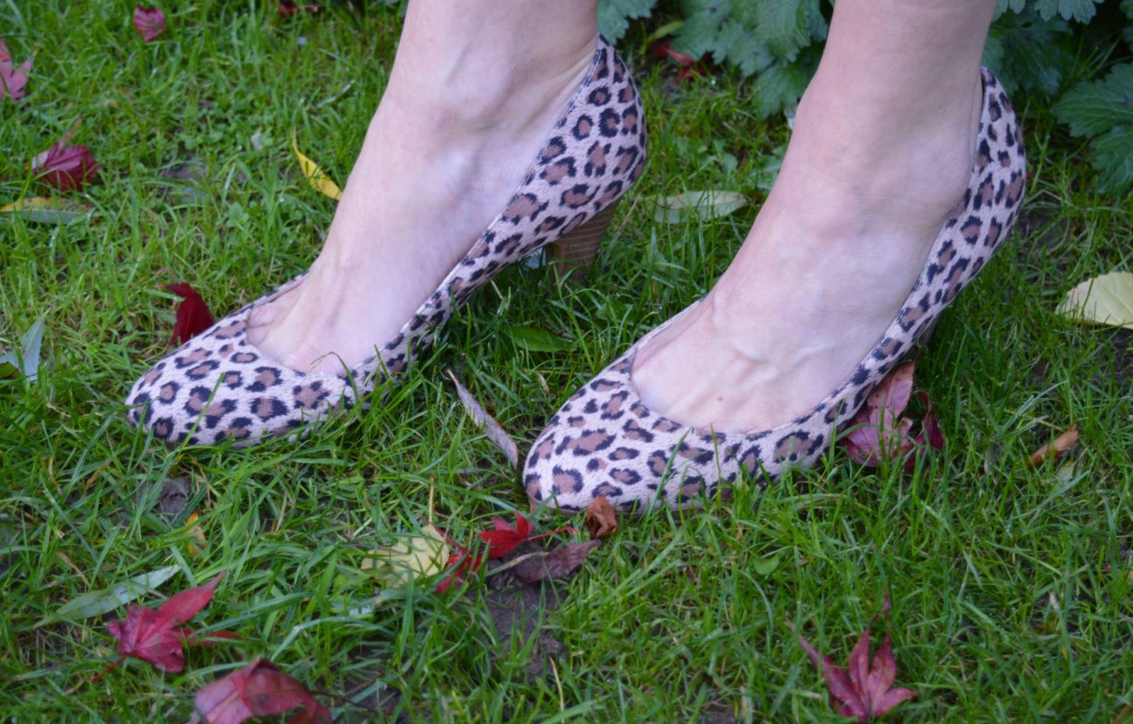 New Look leopard print court shoes