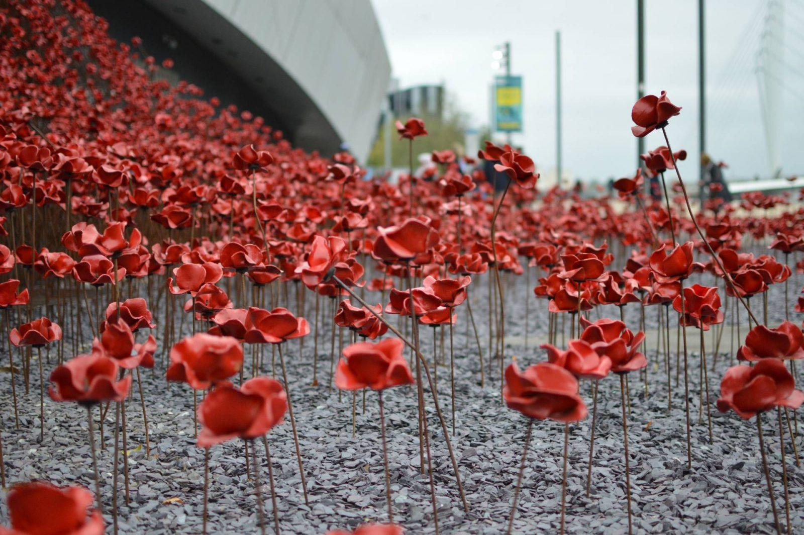 poppies Imperial War Museum North