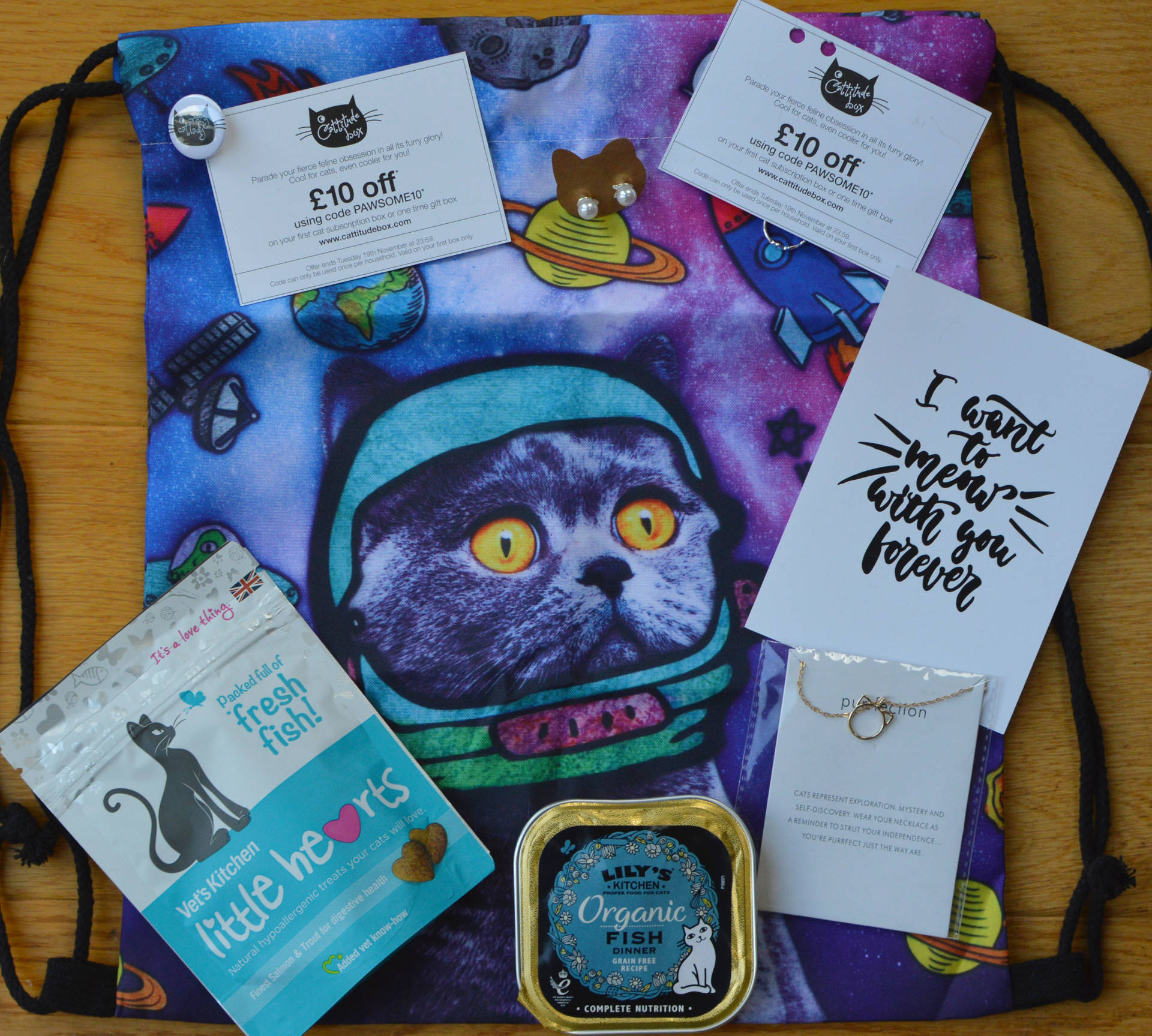 Cattitude Subscription Box Review: the Purrfect Treat For You and Your Kitty