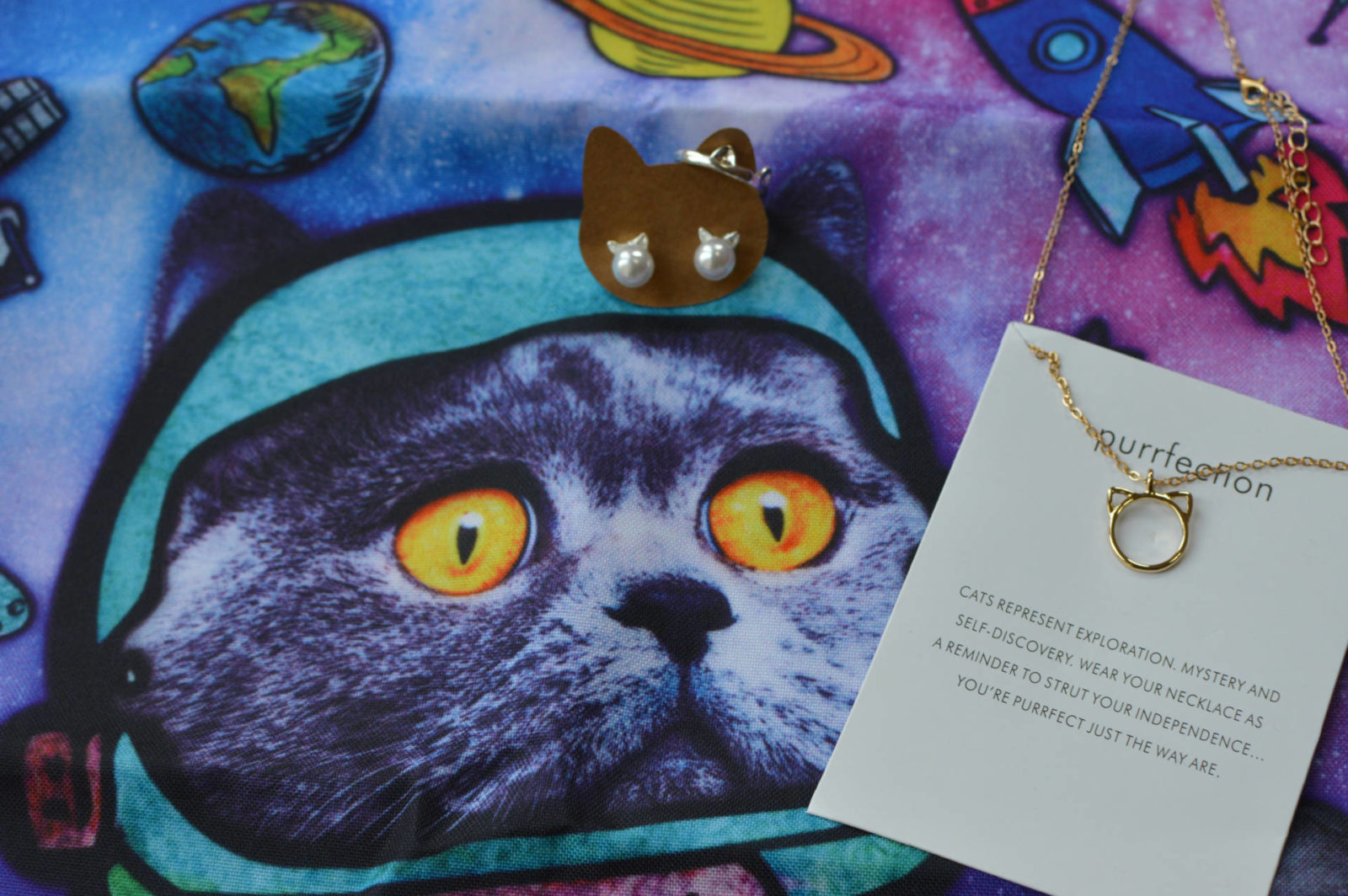 Cattitude Subscription Box