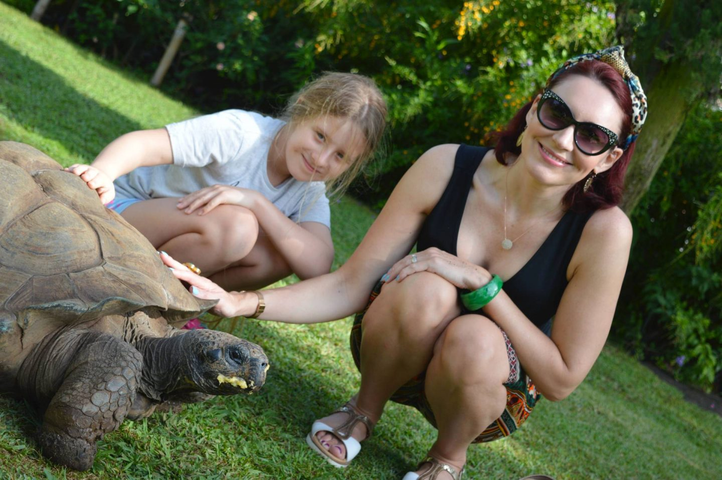 Meeting Colombo the Tortoise, Jardins do Lago hotel, Funchal