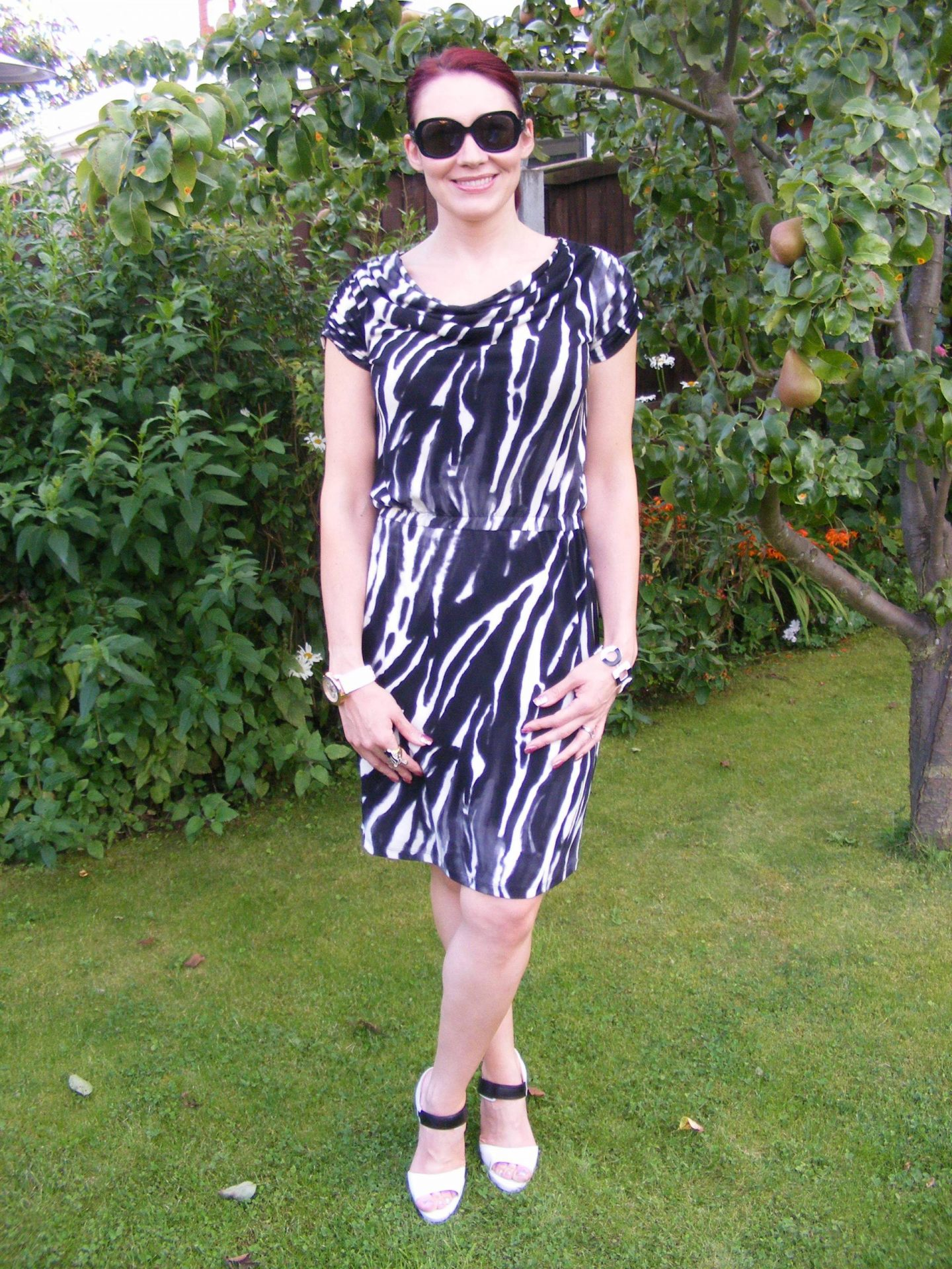 Wallis Zebra Print Dress