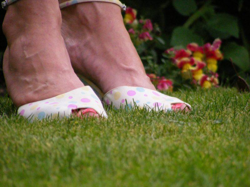 Debenhams spot wedge shoes