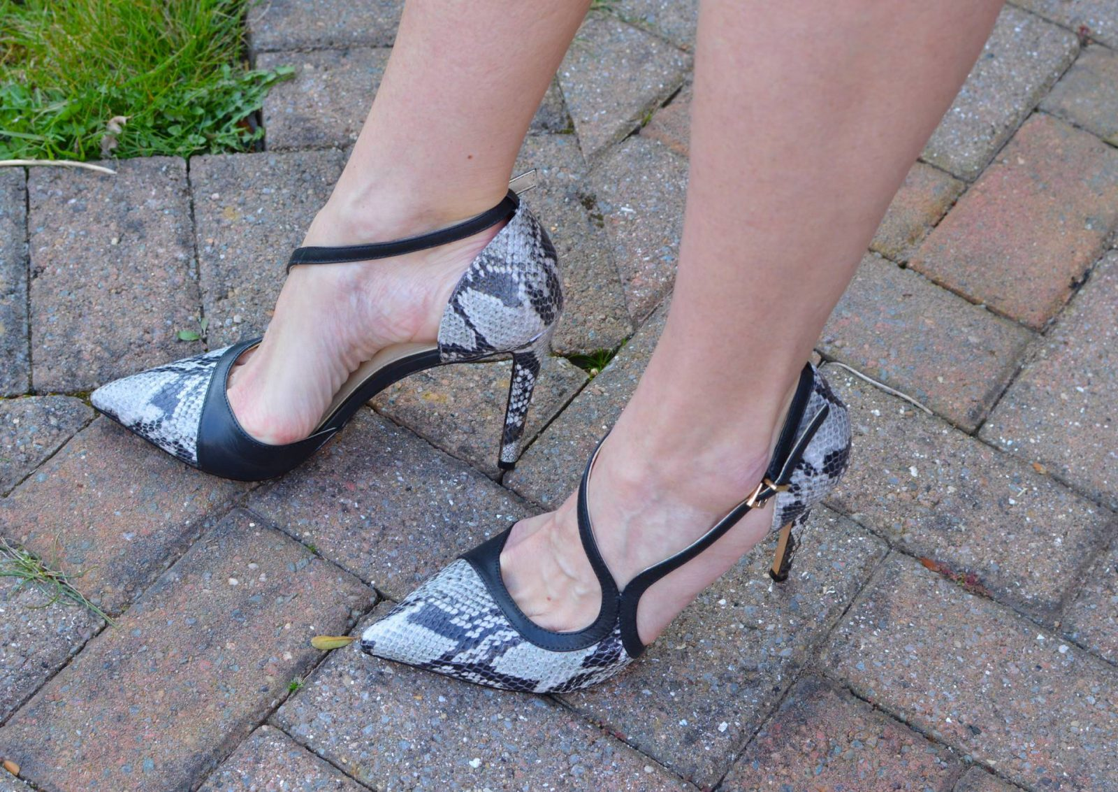 Vince Camuto snakeprint shoes