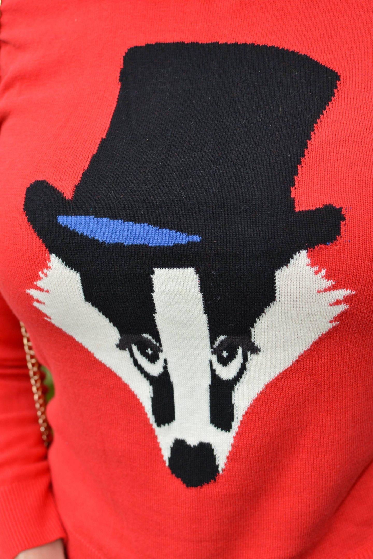 Louche badger jumper