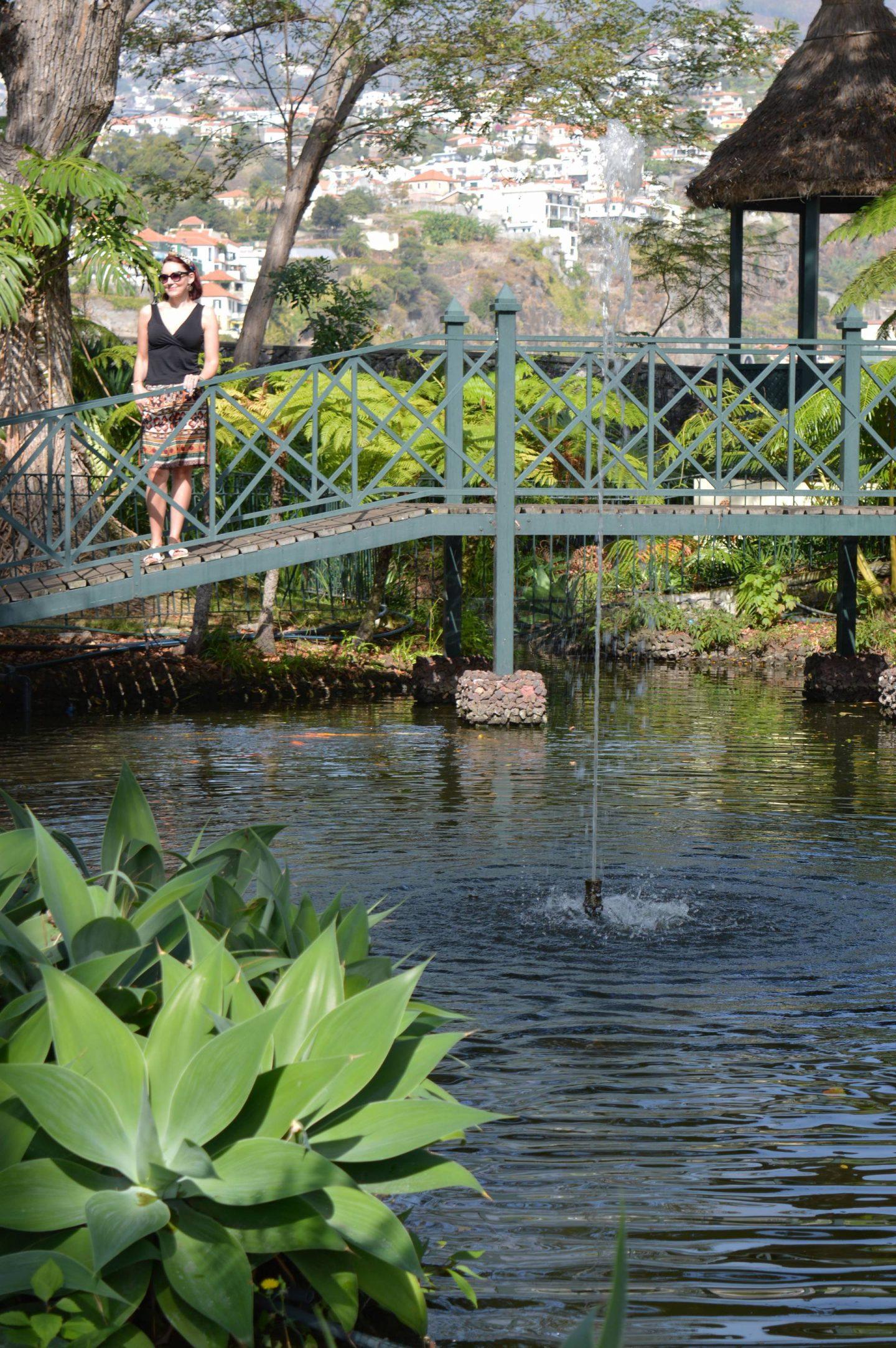 Meeting Colombo the Tortoise, Jardins do Lago hotel, Funchal